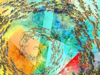 Multi-colored swirl of several colors