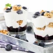 two blueberry yogurt desserts on metal tray