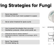 Chart showing monitoring Strategies for Fungi on Cannabis